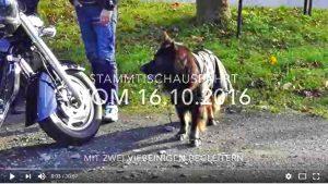 not-oktober-2016-video